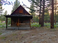 Old Cabin ? 2016