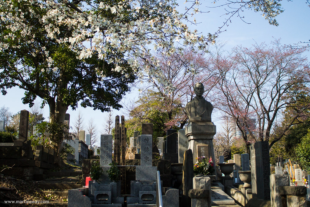 Cimitero di Aoyama