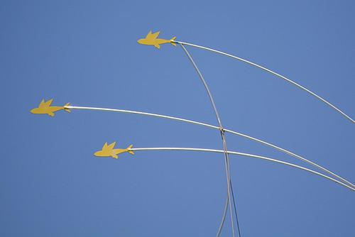 flying malolo