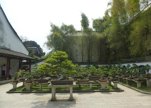 Fujian-Fuzhou-Parc-Lac Ouest (36)
