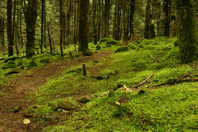 Περπατώντας στην Ορεινή Ναυπακτία