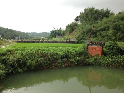 石虎田維持著自然的樣貌。