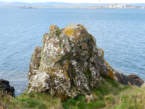 detail water rock stone hugh formation miller study shore geology cromarty impressive allanmaciver