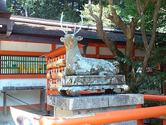 shrine093