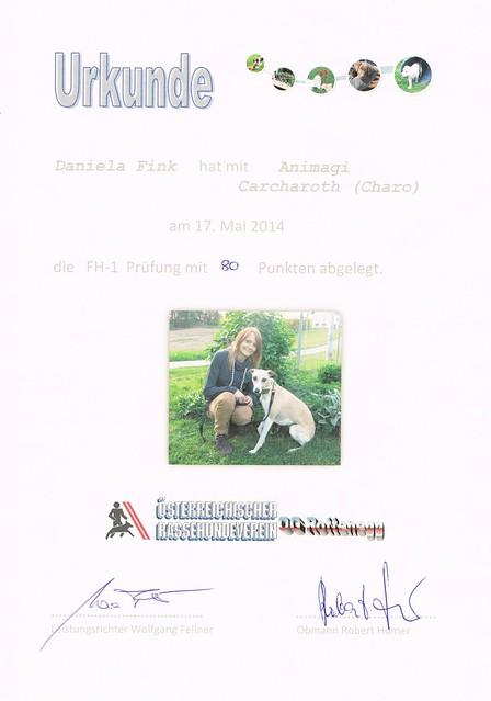 Charo_Fährte1_2014-05-17
