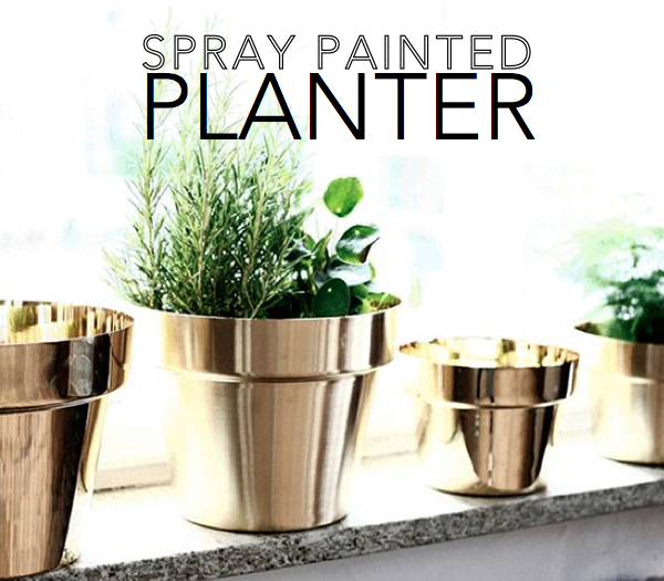 DIY Spray Painted Planter