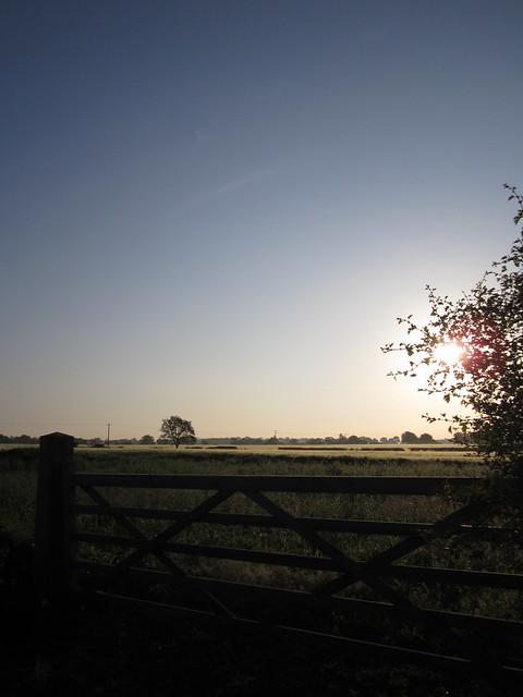 Early morning walk May 2014 003