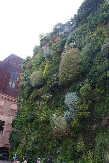 caixaforum madrid vertical garden