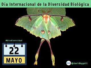 22 de mayo es el Día Internacional de la Diversidad Biológica #BioDiversityDay @CBDNews @UNBiodiversity #idb2015