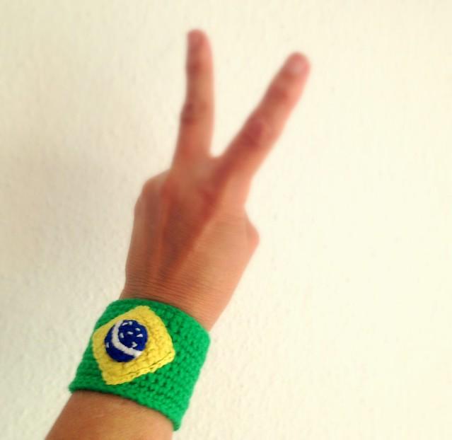 brazil flag 132