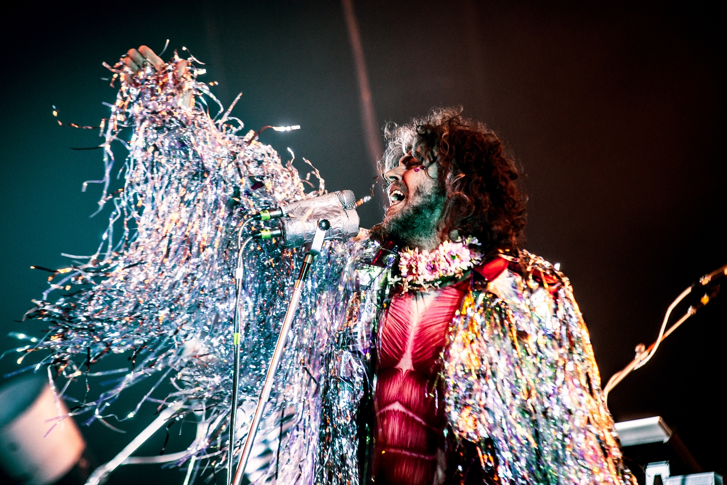 The Flaming Lips 40