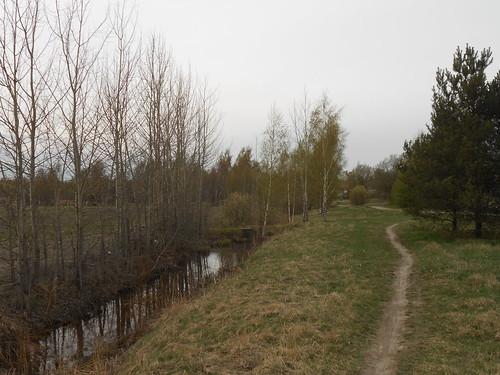 Niittynäkymä, Pohjois-Tapiola Espoo 28.4.2014