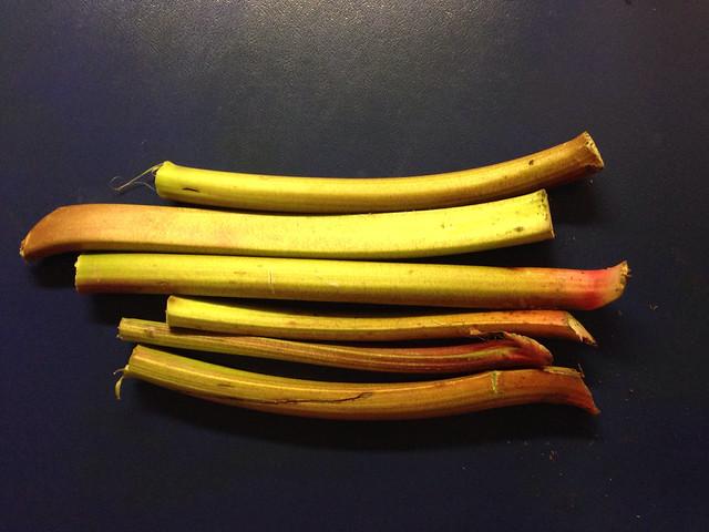 Pétiole de rhubarbe pour tarte à la rhubarbe