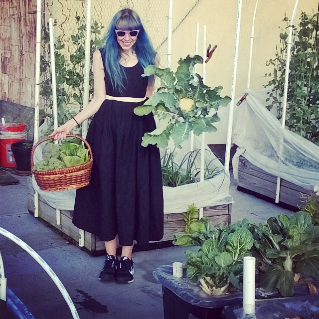 First big multi vegetable harvest of the year!  Sugar snap peas, broccoli, bok choy and the first cauliflower! HAPPINESS! #sugarsnap #sugarsnappeas #broccoli #cauliflower #bokchoy #basket #yum #green #freshfood #vegetablegarden #rooftop #NYC #Brooklyn #ve