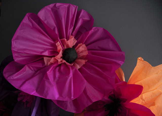 Giant Poppies How To Make Paper Flowers Mollie Makes