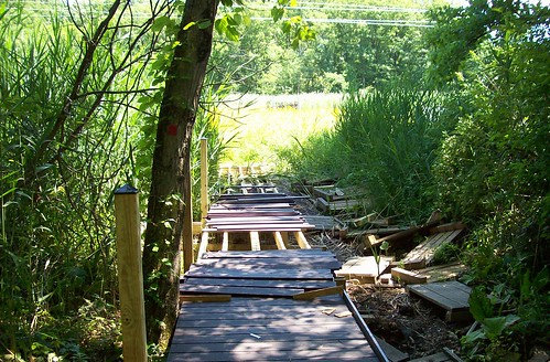 unfinished boardwalk