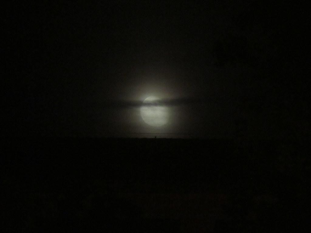 Luna de bruma