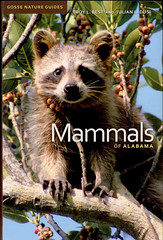 Professors Troy Best and the late Julian Dusi co-authored the only conclusive guidebook to mammals in Alabama.