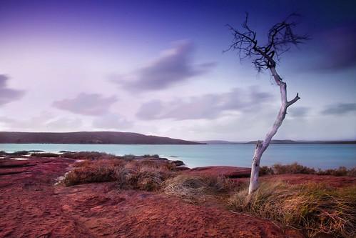 red rock australia western kalbarri
