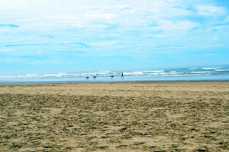 Scenes from Arcadia Beach