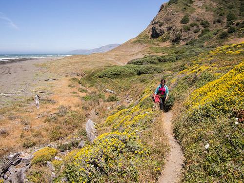 Anna walking through wildflowers