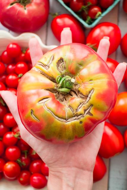 It's raining tomatoes!_4