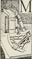 """Image from page 157 of """"The American educator; completely remodelled and rewritten from original text of the New practical reference library, with new plans and additional material"""" (1919)"""