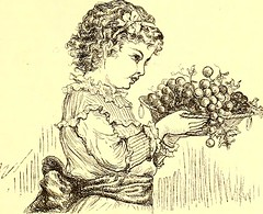 """Image from page 816 of """"St. Nicholas [serial]"""" (1873)"""