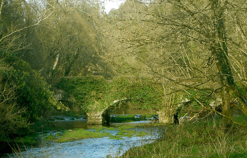 An Old Bridge at Tomnafinnogue Wood, Co. Wicklow, Ireland