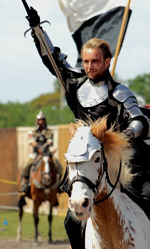 floridarenaissancefestival march2017 25thannual deerfieldbeachflorida florida southflorida unitedstates usa renaissancefestival armsandarmor joust thejoust knights horses action emotion excitement skill kingsroyalorders fieldofdreams horse horsebackrider knight battle gear helmet shield lance sword noblecauseproductions sanantoniotexas viewingstand nobleattire portraitsofrenfest portrait people smile outdoor fun pose greatfacesofrenfest festivalemployee sunlit walk stroll costume happy face shadow closingday cast castofcharacters farewell faretheewell eatdrynkandbemerrie fourknights exciting knightsbeforetheking braveknight vertical leejameskirk joustingknight