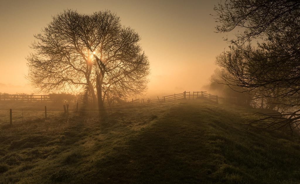 The Misty Morn