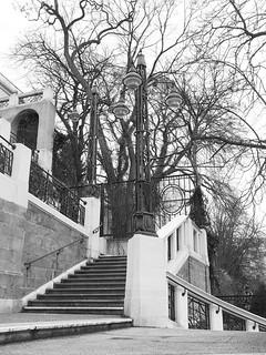 Image of Strudlhofstiege. wien vienna alsergrund schwarzweis strudlhofstiege stiege treppe stair strasenlaterne kandelaber