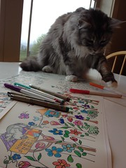 "Gennie Choosing Her Pens to ""Help"" color the wallpaper swatch, "" Home Sweet Home""."