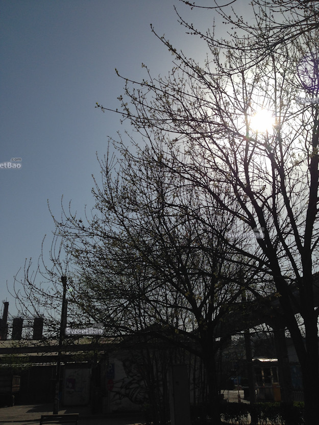 2014-03-30 090852.jpg