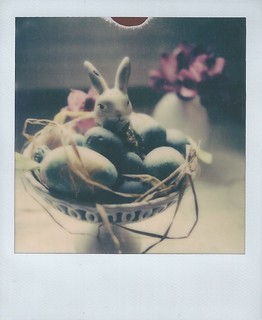 Happy Easter from the Polaroid Bunny