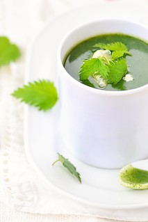 nettle soup with cheese.3