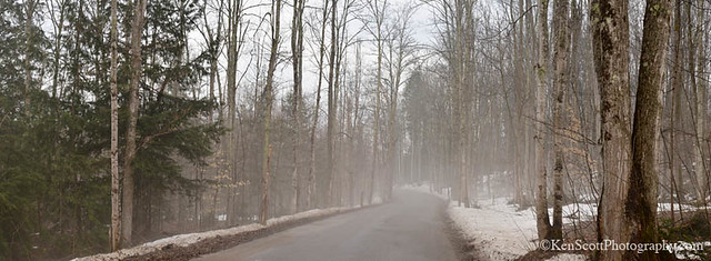 Country Road ... thaw fog