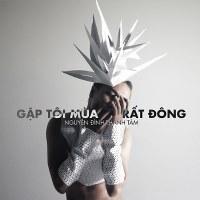 Nguyễn Đình Thanh Tâm – Gặp Tôi Mùa Rất Đông (2013) (MP3 + FLAC) [Album]