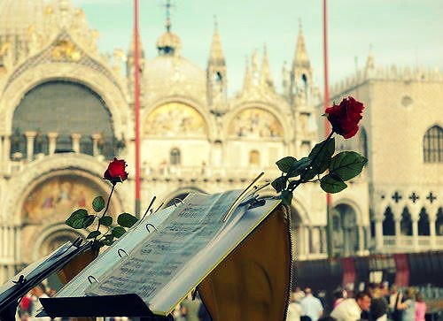Piazza San Marco e il bocciolo