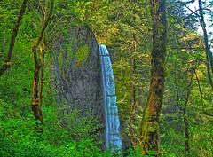 Latourell Falls (Lower)