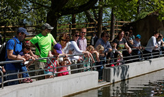 Large_Family_Day_2014_048