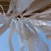 114886_Metz, FRAC-10ans [Gianni-PETTENA](mai2014) ©iJuliAn
