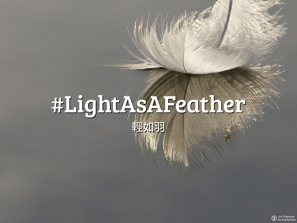 Flickr_Friday_LightAsAFeather_ZH