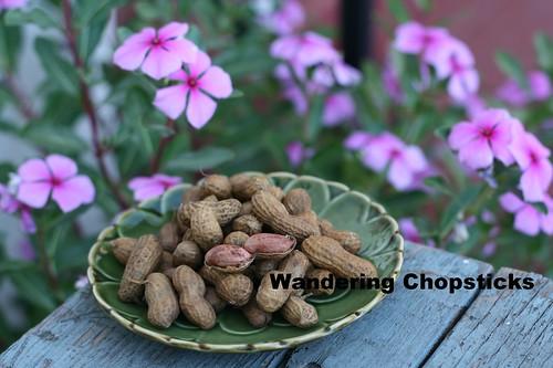 Dau Phong Cu Lac Luoc (Vietnamese Boiled Peanuts) 1