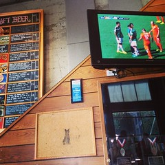 Watching #cats #WorldCup and what doe it all have to do with the 21st Amendment? #SF