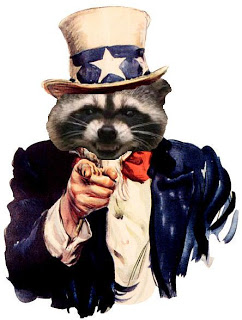 uncle-sam coon