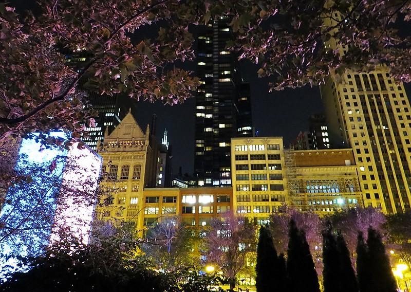 Chicago Illinois        62 26jly14_023