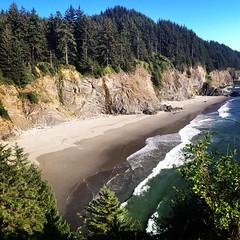 Samuel Boardman Scenic Corridor on the Oregon Coast. 28 July 2014.