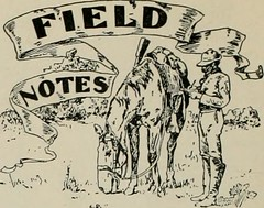 "Image from page 157 of ""Western field"" (1902)"
