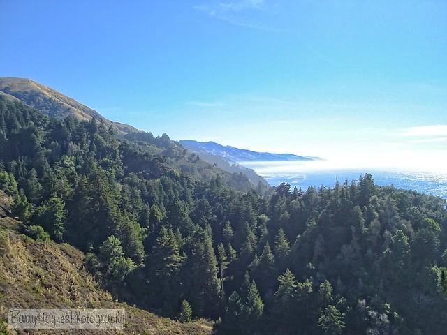 california2 (4) copy